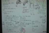 b_13_001.jpg